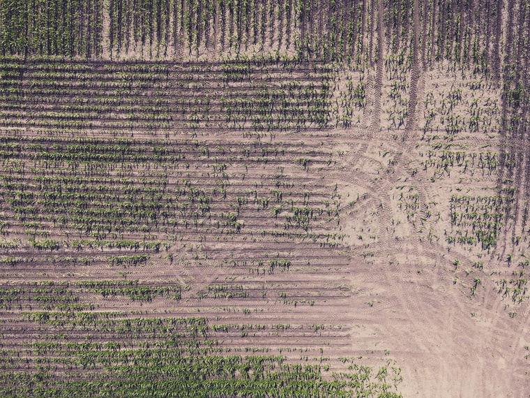 edito photo soilcompaction help and advice