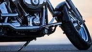 Moto Editoriale scorcher 11 8 Pneumatici