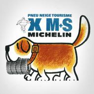 MICHELIN X M+S
