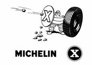 MICHELIN ZX