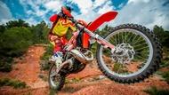 moto edito gallery 6 tires