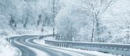 winter_xin_2722-1178