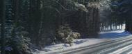 MICHELIN Alpin 6 vinterdekk