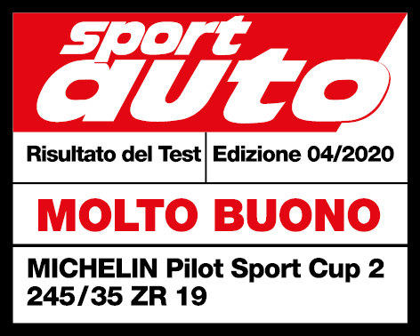 spa 42020 michelin pilot sport cup 2 sg it