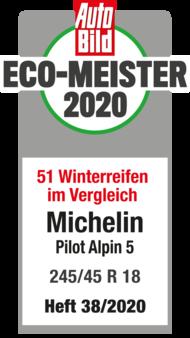 2020 AutoBild Eco-Meister Pilot Alpin 5
