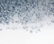 MICHELIN X-Ice North 4 vinterdekk