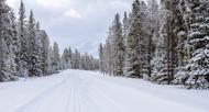 X-ICE® SNOW Tires
