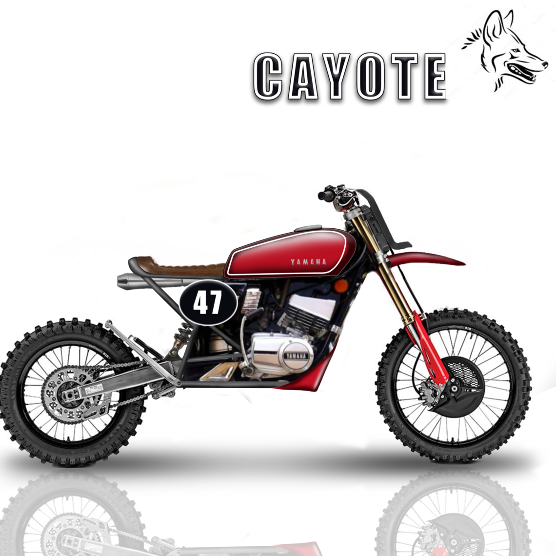 Cayote RED